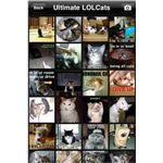 Ultimate LOL Cats