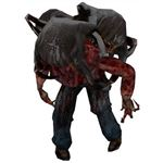 Half-Life 2 Poison Head Crab Zombie