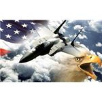 patriotic-backgrounds-eagle