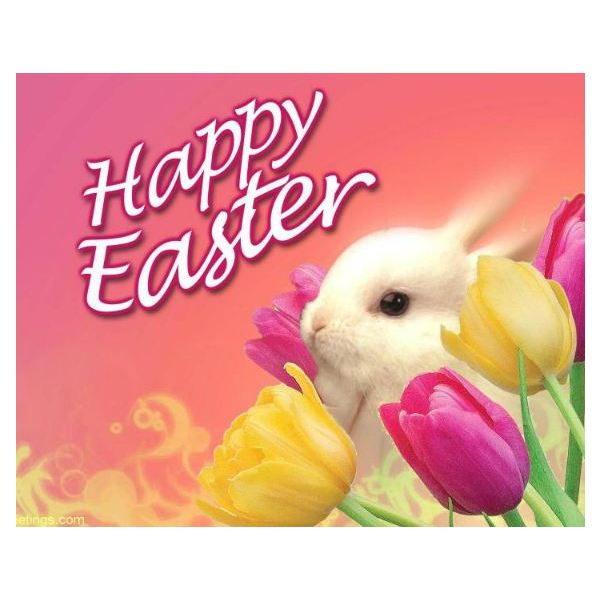 Cute Easter Wallpaper Easter bunny wallpaper in