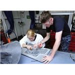 800px-US Navy 100518-N-6935K-005 Aviation Structural Mechanic Airman Robert Payne and Aviation Structural Mechanic 3rd Class Kimberly Heitz performs maintenance