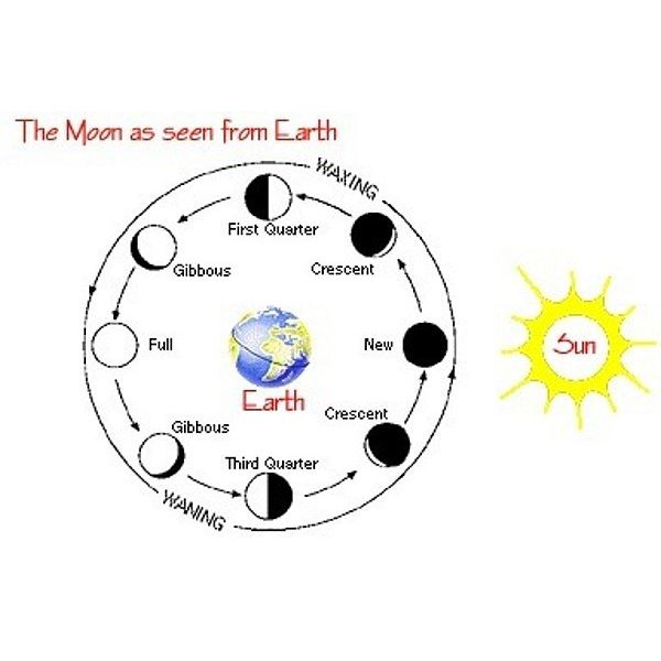 solar system moon phases with earth - photo #32