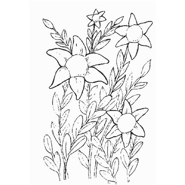coloring book flowers - Detailed Sunflower Coloring Pages