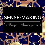 Sense-Making for Project Management