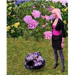 The Sims 3 Space Rock