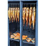 fish in a smoker dreamstime 6554844