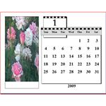 Microsoft Office Calender Templates