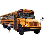 School bus fees