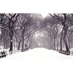 winter-backgrounds3
