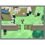 There is a nice level of polish and detail to the Unova region.