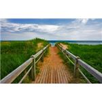 Wide Angle Beach Boardwalk