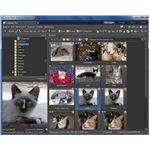 Zoner Photo Studio 12 Manage Tab