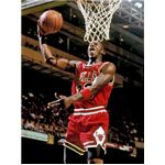 Basketball players are typically tall - picture of Michael Jordan by Steve Lipofsky and released into the public domain under GNU Free Documentation License