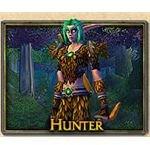 Dark Elf Hunter