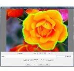 Using PaintShop Pro's Object Extractor