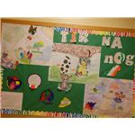 tir na nog board two