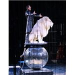 """Lion tamer"" by Usien/Wikimedia Commons"