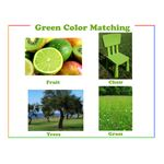Green preschool printable color flash card