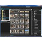 Photo Management in ACDSee Pro 3