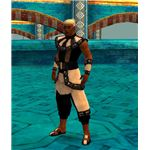 Guild Wars Monk FoW Elite Armor