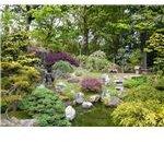 800px-SF Japanese Garden