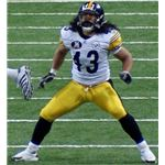 Troy Polamalu Likes Head & Shoulders