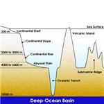Ocean Basin. Credit: http://elearning.stkc.go.th/lms/html/earth_science/LOcanada6/604/9_en.htm
