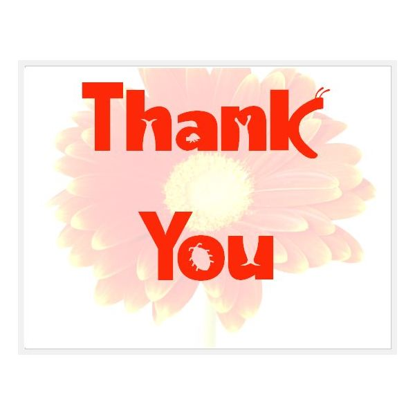 Daisy Thank You  Microsoft Thank You Card Template