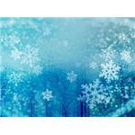 collection-winter-backgrounds-snowflakestrees