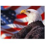 patriotic-backgrounds-eagleflag