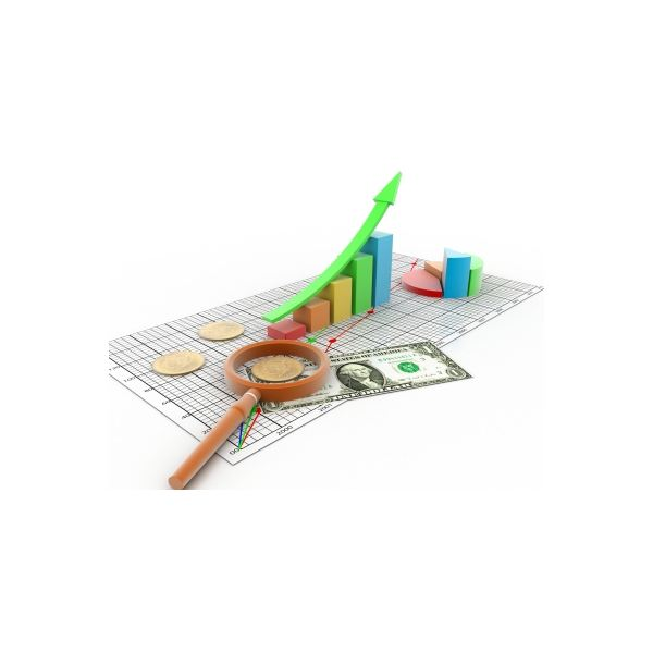 Financial Statements and Decision Making: Learning About Your Business