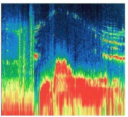 Spectrogram of magnetosphere of Ganymede