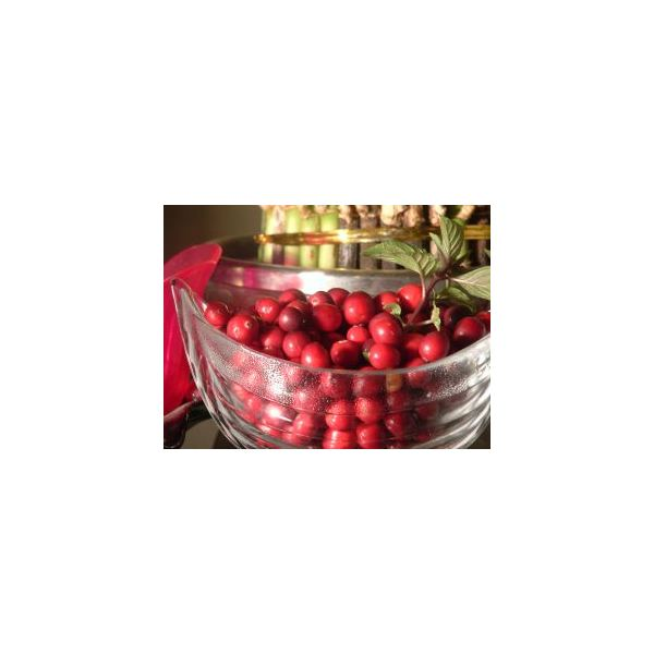 Natural Health Supplements: The Health Benefits of Cranberries