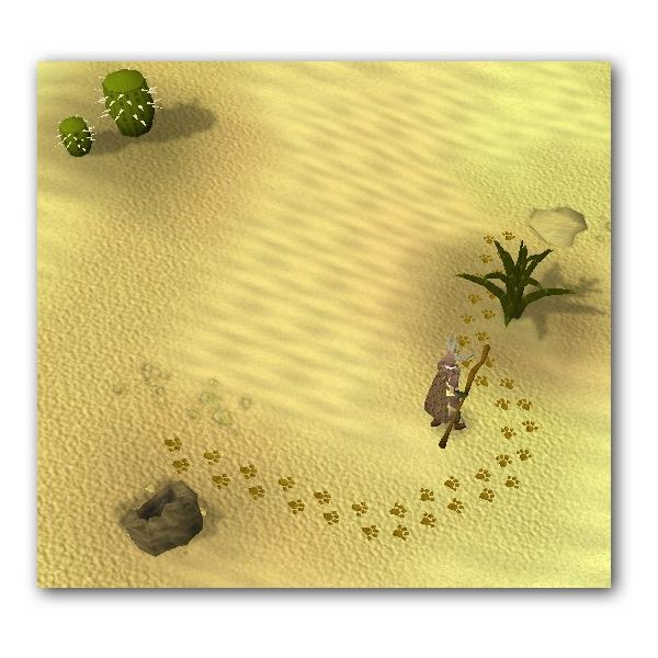 Desert Devil Tracking