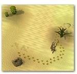 Desert Devil Tracking