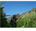 Prickly Peak 001