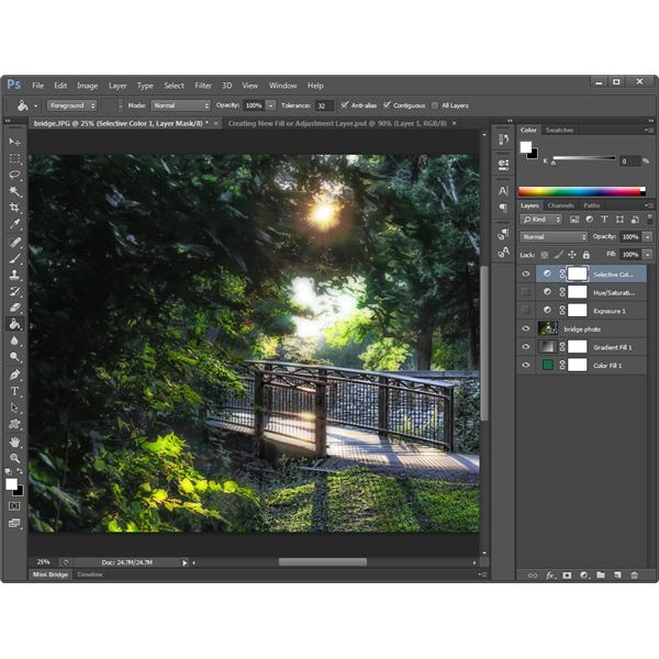 Photoshop Workspace View