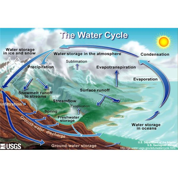 The Water Cycle from Wikimedia Commons by USGS