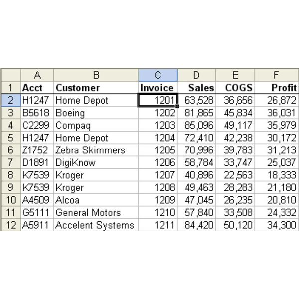 Excel Help: Find Total Sales By Customer By Combining Duplicates, By Mr. Excel