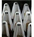 Boo! Happy Halloween!