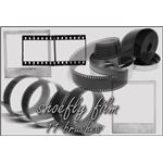 Film brush set by shoe fly