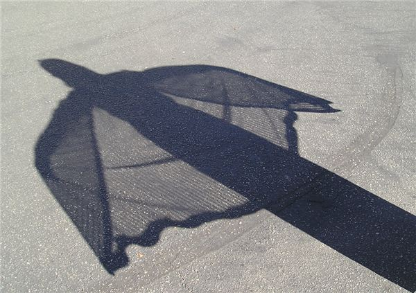 Shadow Paintings Art Lesson for Middle or High School Students