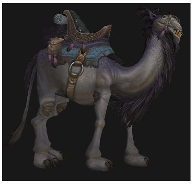 Grey Riding Camel