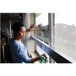 800px-US Navy 090301-N-9610C-048 Lt. Lelanie Aratea, from San Diego, cleans windows in the common room of the Kibono Ie nursing home in Saikai-cho town during a community service project