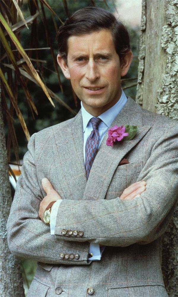 Prince Charles and Elizabeth Hurley Partners in