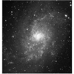 Image of the Triangulum Galaxy.