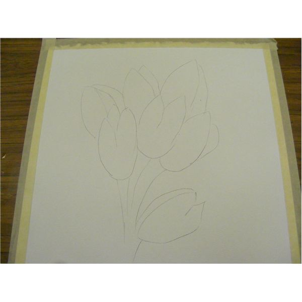 Draw the flower shapes