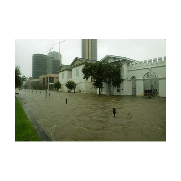 Water covers Royal Street in downtown
