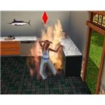 Sims 3 Death and Ghosts Guide Fire