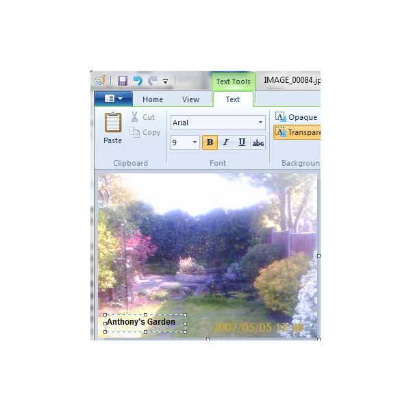How Do You Print Words on a Picture in Windows Live Photo Gallery? WIth Microsoft Paint...